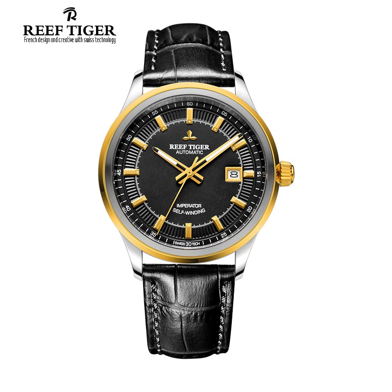 Classic Imperator Yellow Gold Steel 40mm RGA8015-GBB