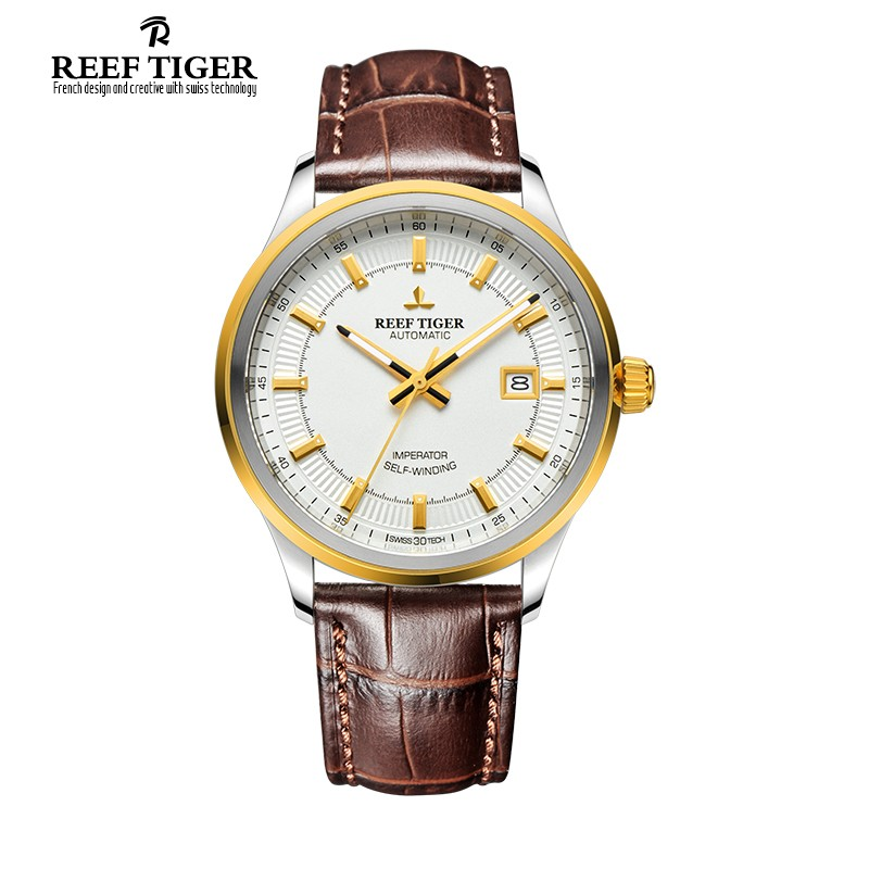 Classic Imperator Yellow Gold Steel 40mm RGA8015-GWB
